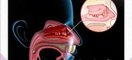 مراقبت های بعد جراحی آندوسکوپی سینوس